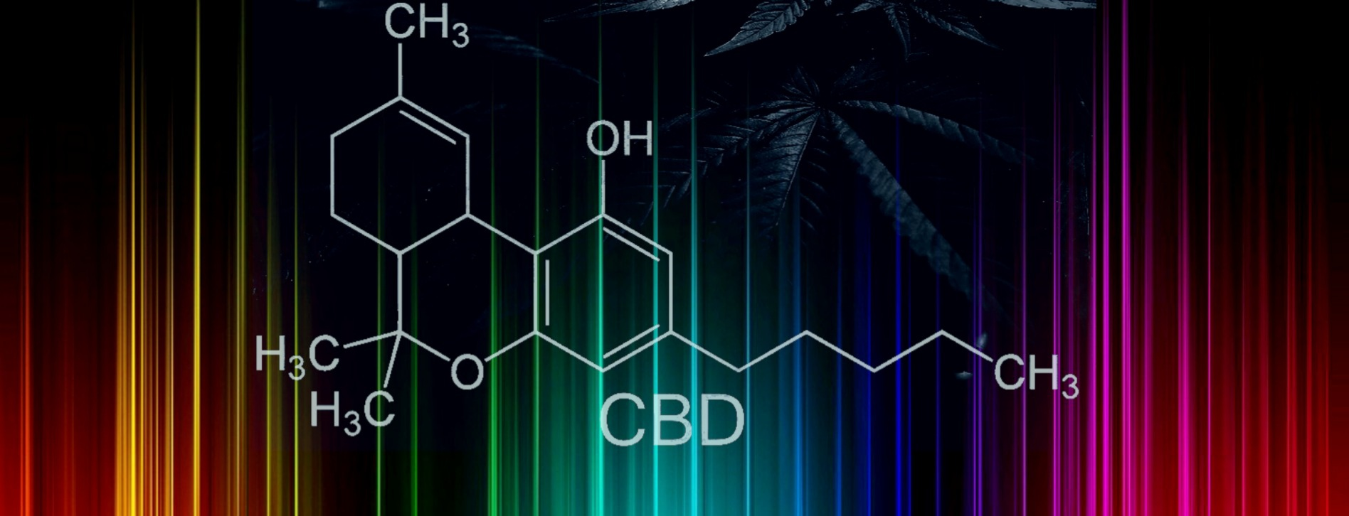 cbd full spectrum and broad spectrum